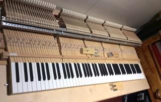 Choix piano C.Bechstein D282 Berlin-Prévalet Musique