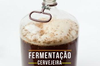 5 fatores chave para uma boa fermentação