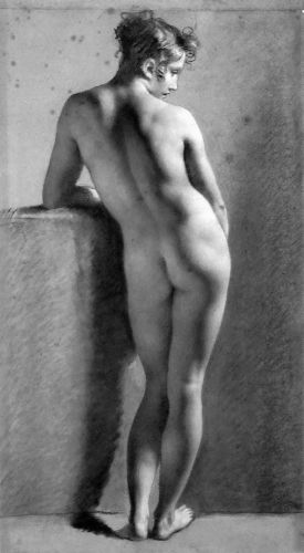 Standing Female Nude Seen From The Back