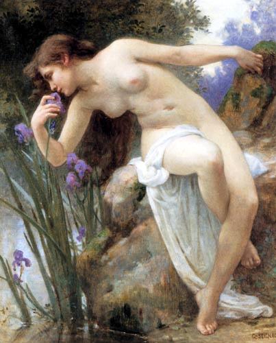 The Fragrant Iris