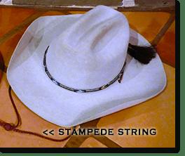 Bring a broad rimmed hat, like a cowboy hat.