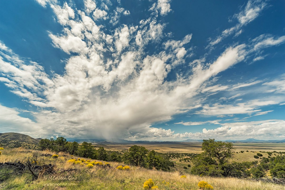 Rain on the Plains (click to enlarge)