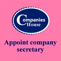 appoint company secretary