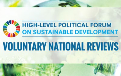 HLPF Voluntary National Reviews 2017: Spur of the moment or planting the seeds for a sustainable future?