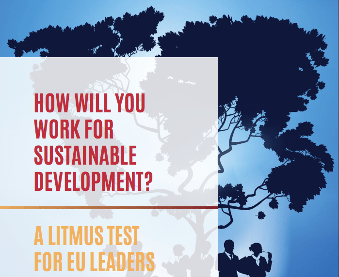 CONCORD's Litmus Test for EU leaders: how will your work for sustainable development?