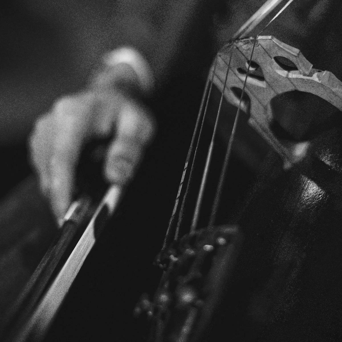 cello2cello-option