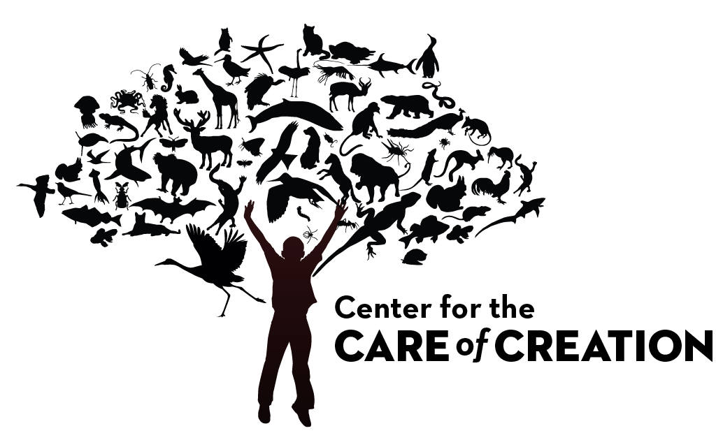 Care of Creation Workshops