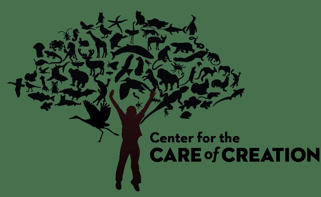 Care of Creation Workshops