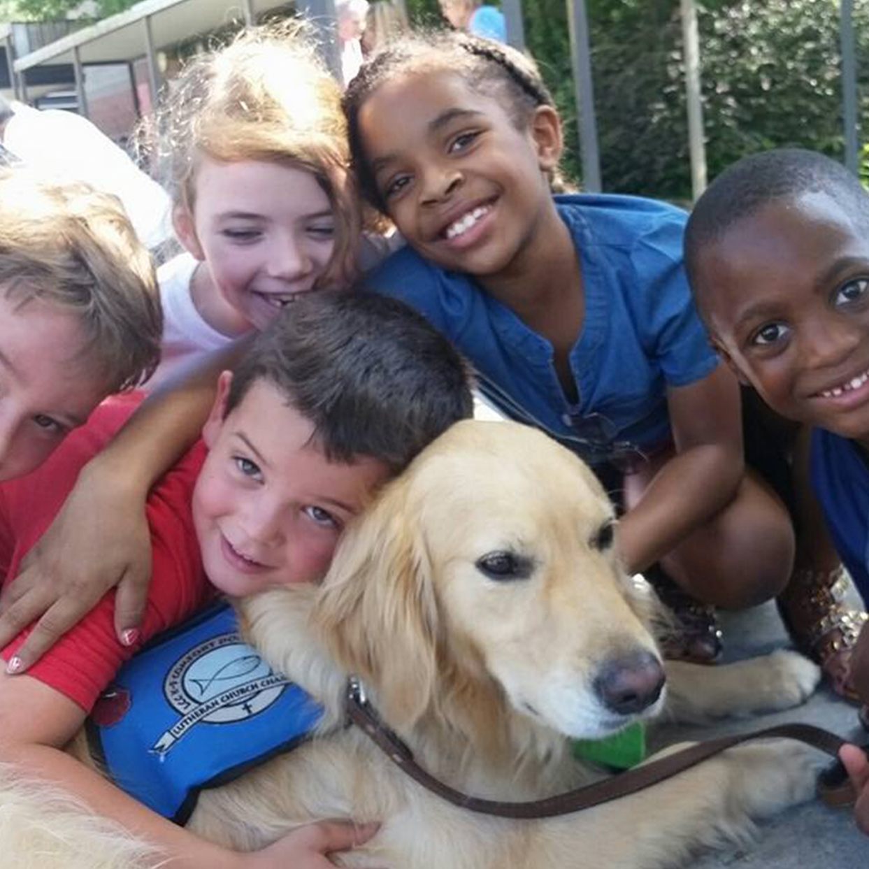 Compassion, Evangelism, and the Comfort Dog Ministry