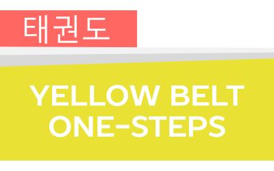 How To: Taekwondo America Yellow Belt One-Steps