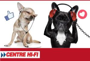 Concours - Gagner des écouteurs Bose Bluetooth in ear ou one ear
