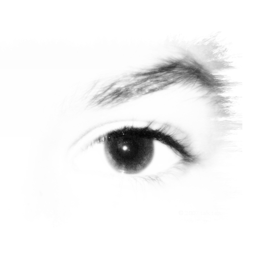 Black and white high key contrast of eyes and eyebrows. Copyright by Shireen Jeejeebhoy.