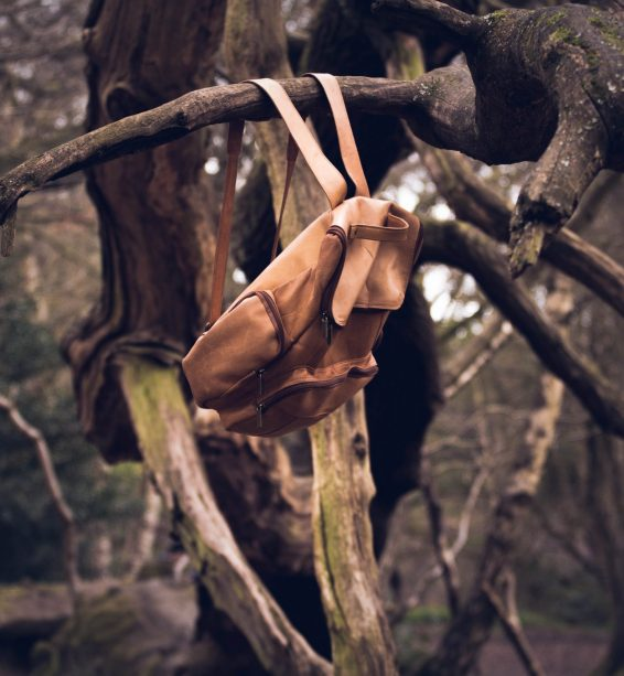 Leather Rucksack In tree