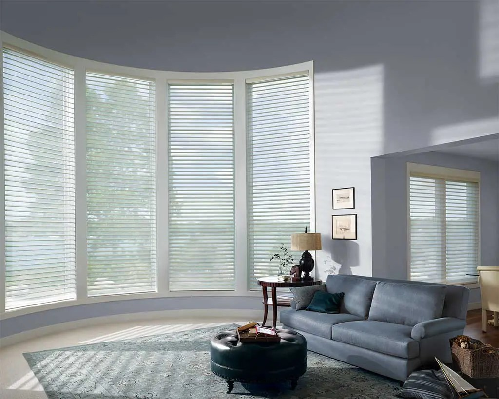 Silhouettes are shades with soft adjustable fabric vanes that float between two sheer panels