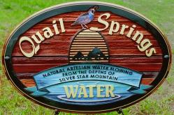 custom cedar sandblasted sign by condor signs
