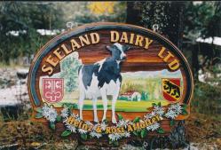 cow painted on cedar sign