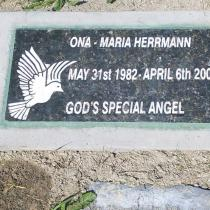 Special person plaque,sandblasted granite sign,memorial,special person,event,dogs cats,Condor signs quality handcrafted