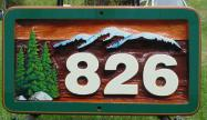 address sign with numbers sand blasted into cedar,residential sandblasted cedar sign,residential sign,Enderby BC,these look good under a bigger sign,