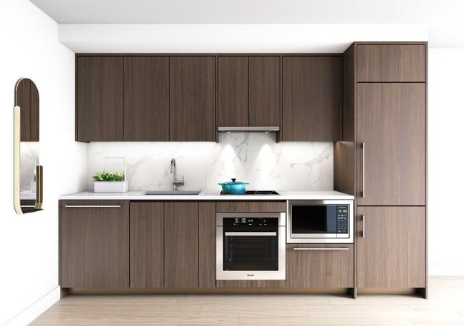 Central Condos kitchen