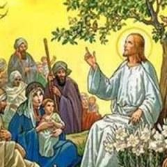 Liturgia e Homilia do XI Domingo do Tempo Comum, Ano B