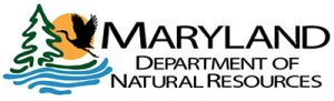 DNR Awards $31 Million for Local Water Quality & Resiliency Grants