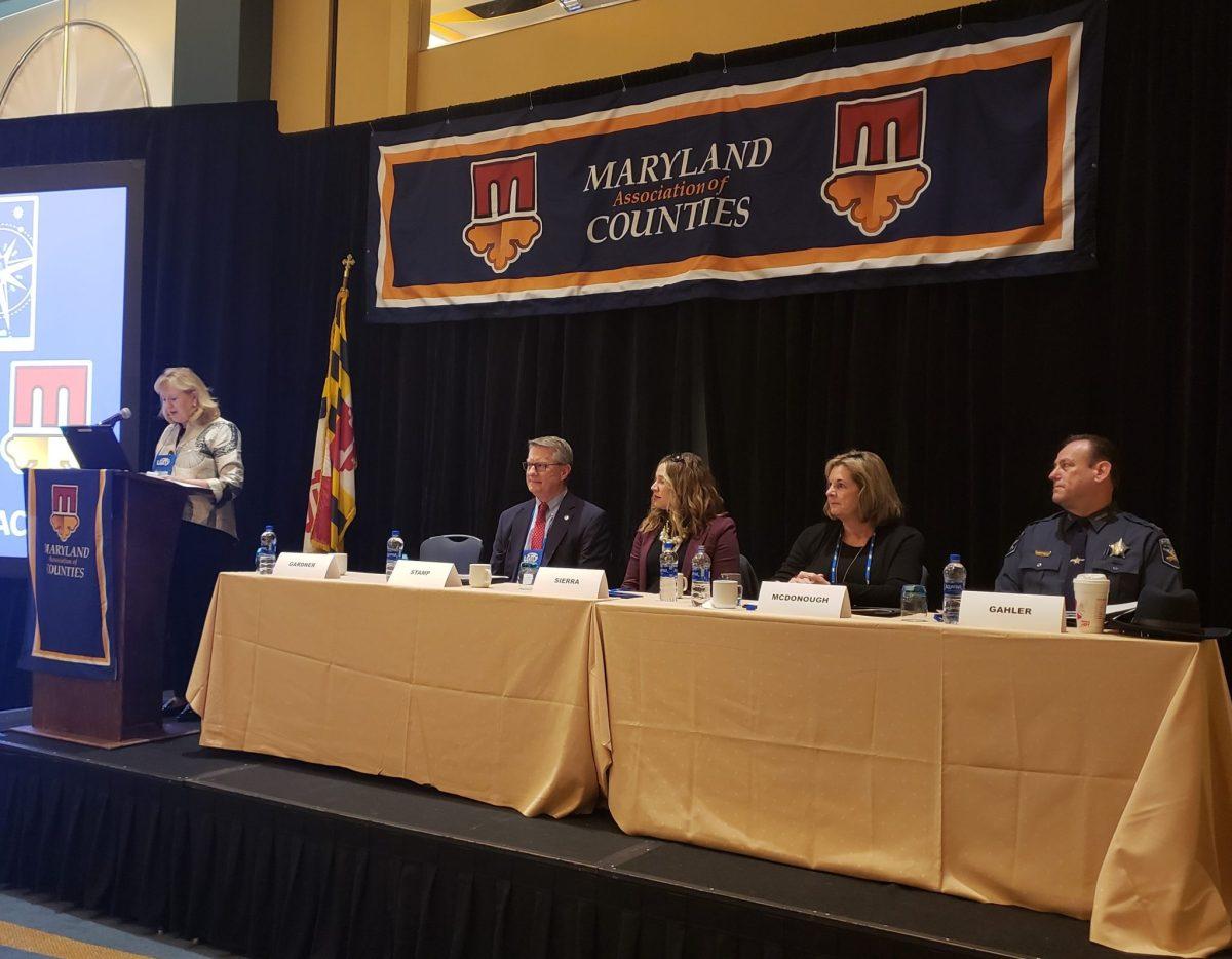 Lifesaving Public Safety Panel