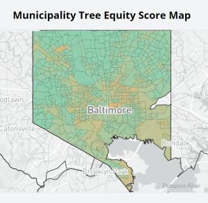 Map of Baltimore City municipal tree equity score