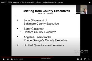 County Executives Brief COVID-19 Legislative Workgroup