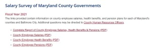The 2021 County Government Salary Survey Is Here!