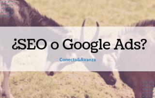 seo google ads conecta y avanza
