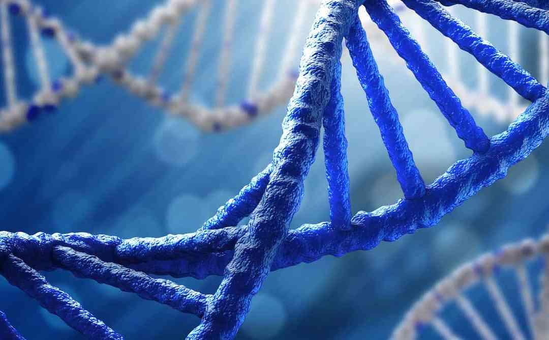 Farmacogenética: que novidade é essa?