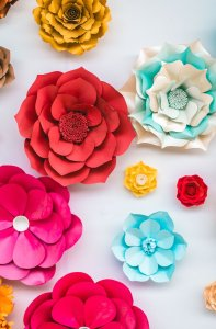 flowers, paper, colorful
