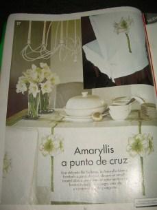 amaryllis (6)
