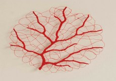 Meredith Woolnough5