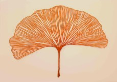 Meredith Woolnough8