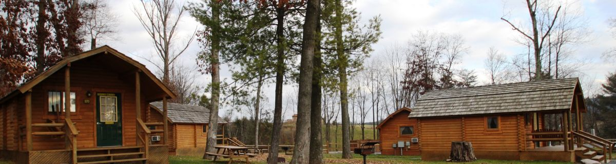 Build Bunkhouse Design Your Own Commercial Log Cabin