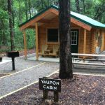 Yaupon cabin at Carolina Beach State Park by Conestoga