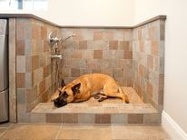 log cabin pet spaces - pet wash station