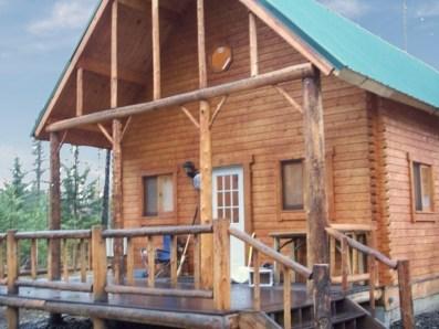 log cabin building books 2