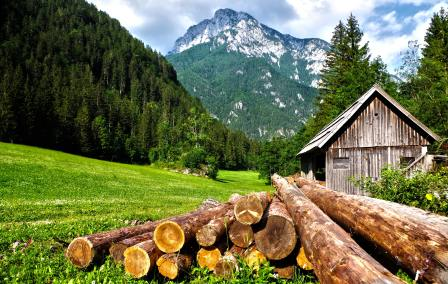 buying land for your cabin 2