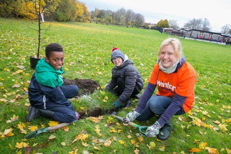 Cidade inglesa vai plantar 3 milhões de árvores: uma para cada homem, mulher e criança que vive nela