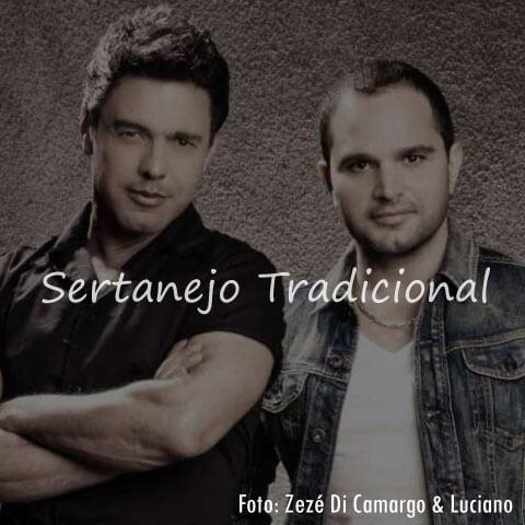 <h1>Pen Drive com Músicas de Sertanejo</h1>