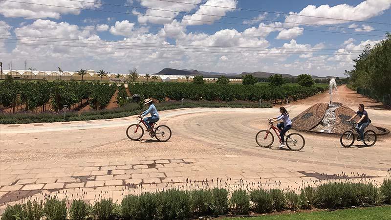conexstur-tour-operator-mexico-zacatecas-campo-real-bike