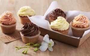cupcakes-24445