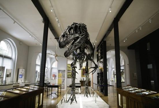 Lapworth-museum