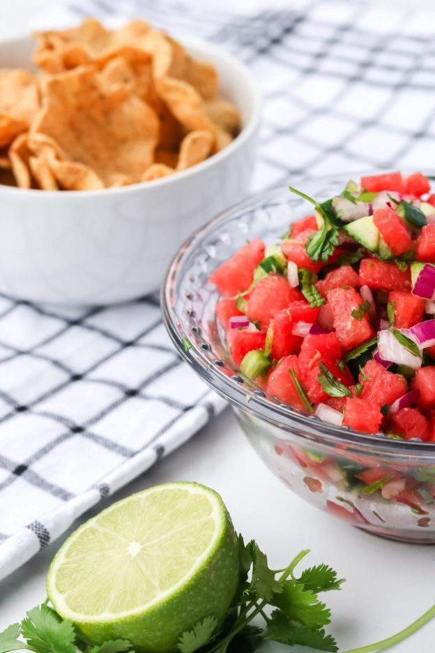 Do you love watermelon as much as I do? Then try this delicious watermelon salsa with mint recipe so you can fall in love with watermelon all over again!