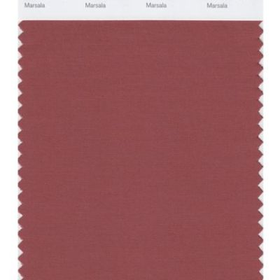 2015 Pantone Color of the Year–Marsala