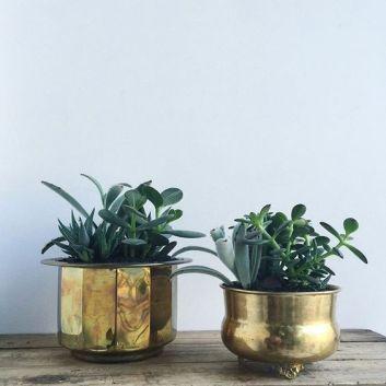 Brass Planters2