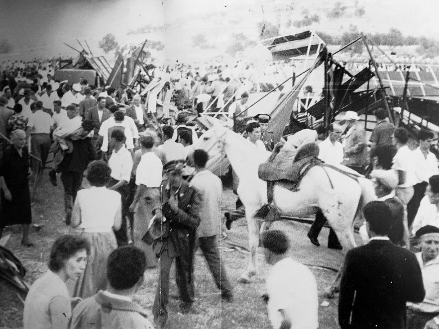 Entrmezclados animales y espectadores en la confusión. 17 de agosto 1961