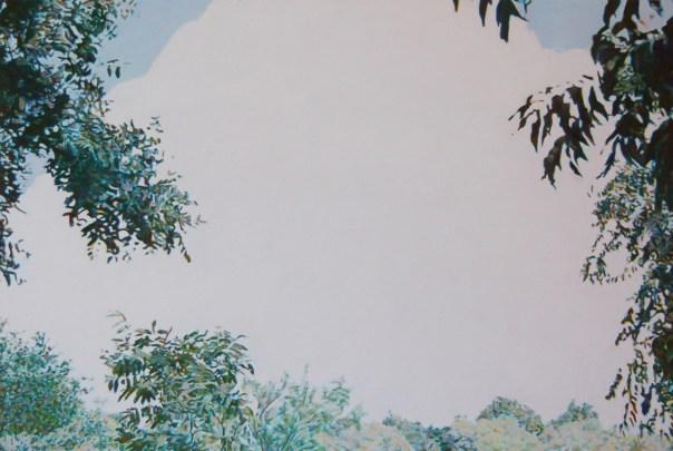 """Cloud, 2013, oil on wood, 16"""" x 24"""""""